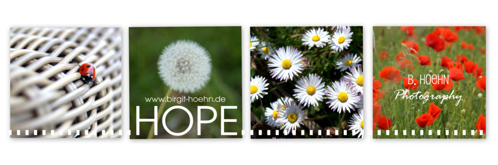 Collage HOPE